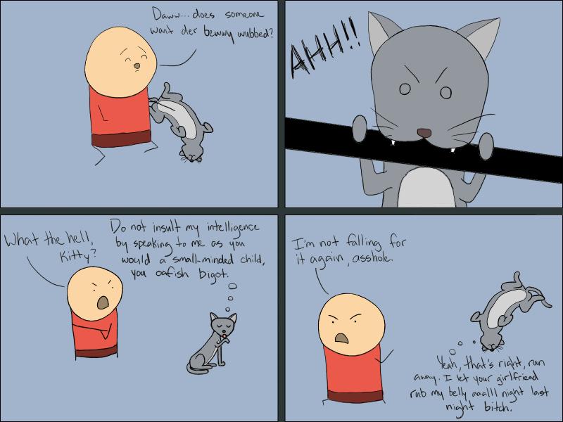 Cat Sass